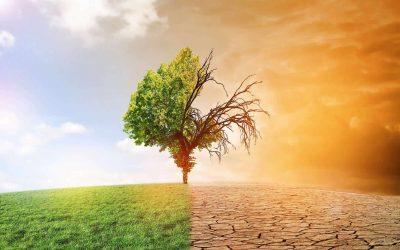 Agir en conscience face au réchauffement climatique